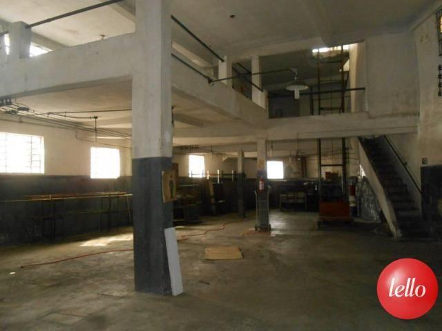 Galpão/depósito/armazém para alugar em Vila prudente, São paulo cod:29963 - Foto 14