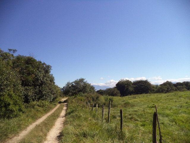 Otimo sítio para criação de gado e moradia - Foto 7