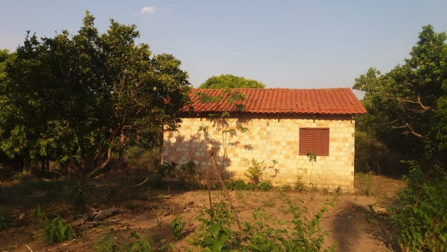 Terreno à venda, 18 alqueires por R$ 540.000,00 - Vila Mandi/PA - Foto 5
