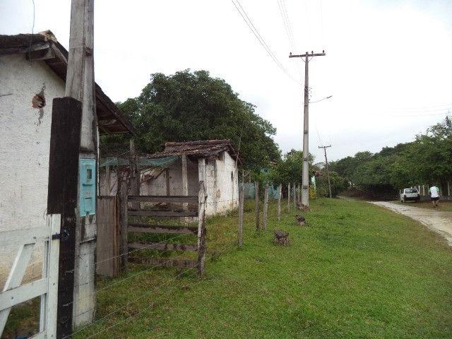 Otimo sítio para criação de gado e moradia - Foto 20