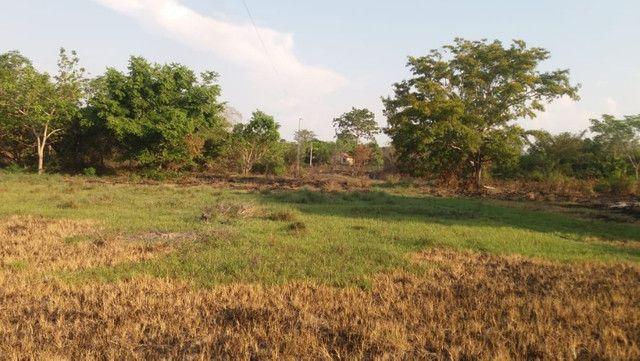 Terreno à venda, 18 alqueires por R$ 540.000,00 - Vila Mandi/PA - Foto 15