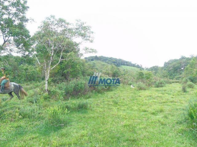 Sítio à venda, 354712 m² por r$ 250.000,00 - miringuava - são josé dos pinhais/pr - Foto 16