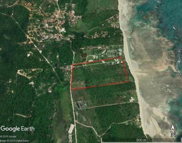 Terreno à venda em Centro, Cairu cod:55951 - Foto 4