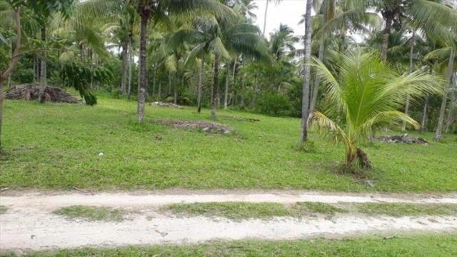 Terreno à venda em Centro, Cairu cod:55951 - Foto 12