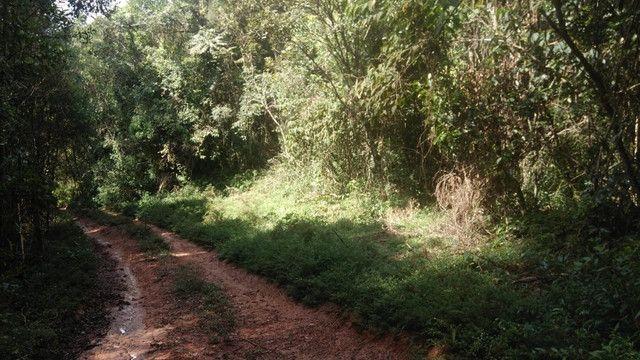 Maravilhoso Sítio Com 16 Hectares, Vila Maria, Em Piranguçu/Mg, A 6 Km De Campos Do Jordão - Foto 4