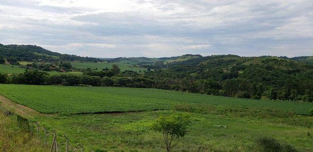 Chácara Linda e com Infraestrutura- Londrina 35 mil m2