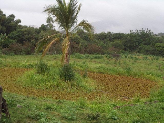 Otimo sítio para criação de gado e moradia - Foto 2