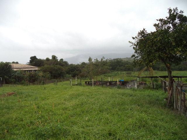 Otimo sítio para criação de gado e moradia - Foto 11