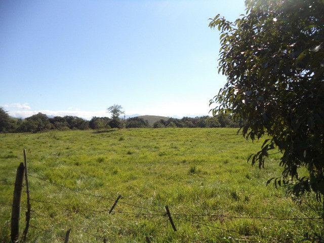 Otimo sítio para criação de gado e moradia - Foto 12