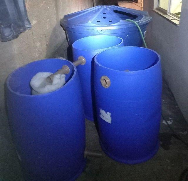 Sistema de criação de peixes em caixa d'água  - Foto 4