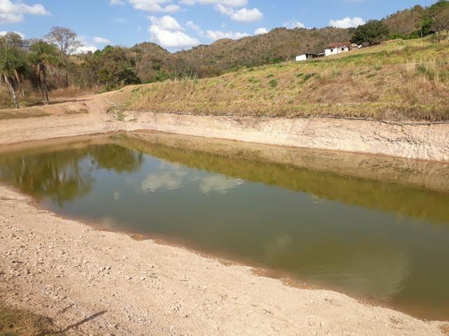 Oportunidade!! Vendo excelente fazenda em Formosa Goiás, com 168 hectares com muita água - Foto 20