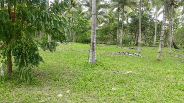 Terreno à venda em Centro, Cairu cod:55951 - Foto 10