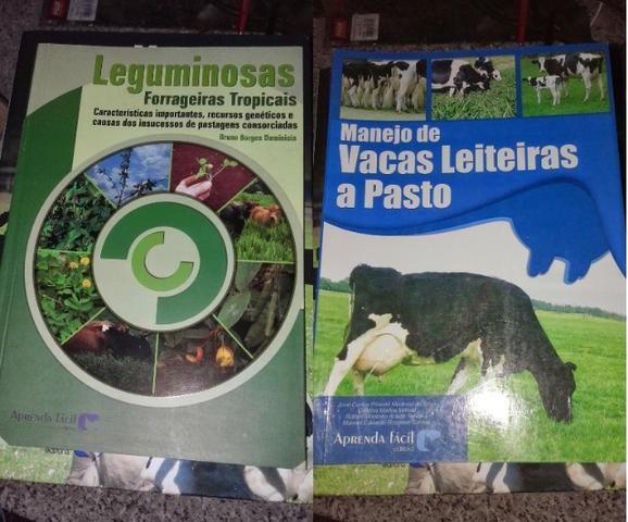 Livro de Bovinocultura - Foto 6