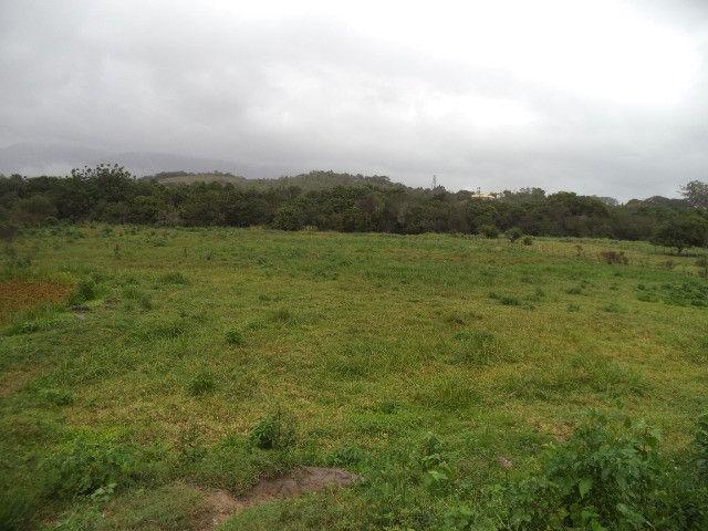 Otimo sítio para criação de gado e moradia - Foto 17