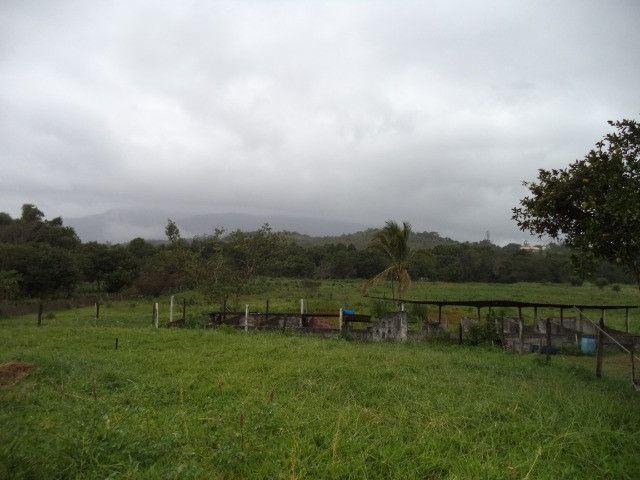 Otimo sítio para criação de gado e moradia - Foto 15
