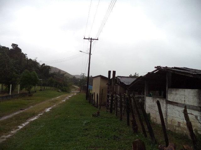 Otimo sítio para criação de gado e moradia - Foto 5