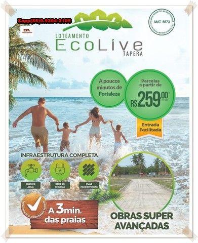 Loteamento EcoLive Tapera @!#@ - Foto 4