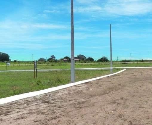 Terreno para mini - granja ( Ceara mirim) 25 x 40 - Foto 7