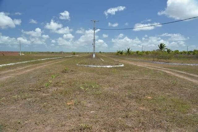 Terreno para mini - granja ( Ceara mirim) 25 x 40 - Foto 6