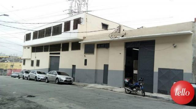 Galpão/depósito/armazém para alugar em Vila prudente, São paulo cod:29963