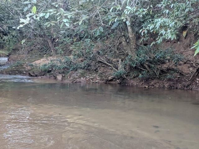 Chacara 6.000 m2 c 30 m beira Rio Cachoeirinha R$70 mil - Foto 2