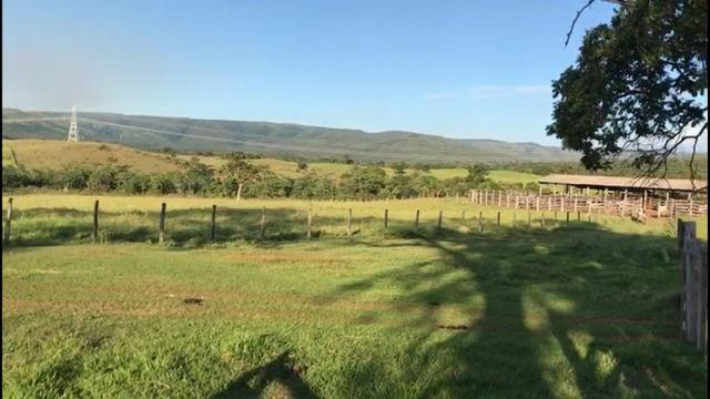 Fazenda a 82 Km de Cuiabá-MT próximo a Acorizal - Foto 11