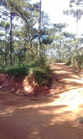 Maravilhoso Sítio Com 16 Hectares, Vila Maria, Em Piranguçu/Mg, A 6 Km De Campos Do Jordão - Foto 13