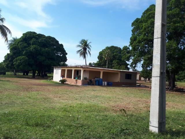 Fazenda à venda, 4 quartos, Centro - Corumbá/MS - Foto 8
