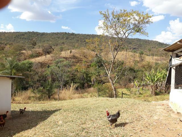 Oportunidade!! Vendo excelente fazenda em Formosa Goiás, com 168 hectares com muita água - Foto 11