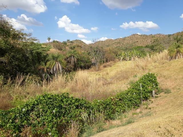 Oportunidade!! Vendo excelente fazenda em Formosa Goiás, com 168 hectares com muita água - Foto 17