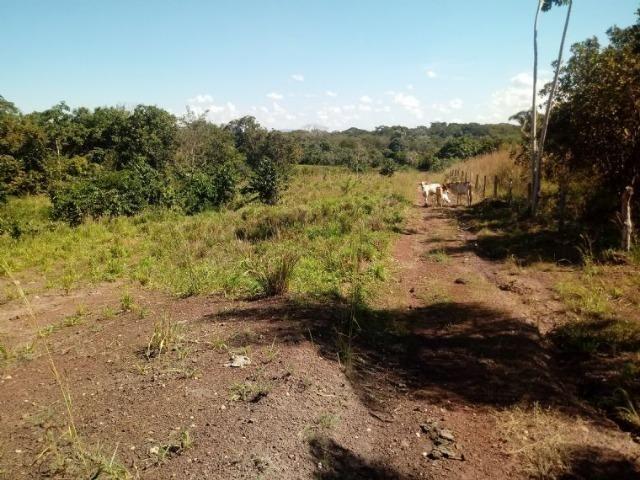 Chácara 2 tanque para peixe e pasto no Rio Cuiabá a 6 km de Acorizal - Foto 2