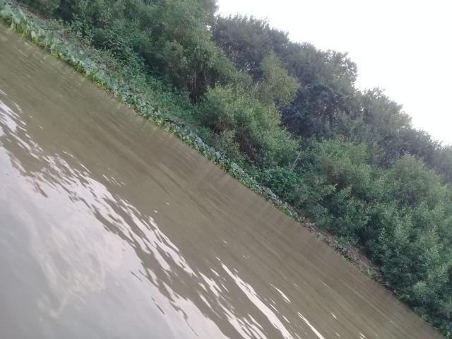 Pesqueiro em barão de melgaço 6 hectares - Foto 11