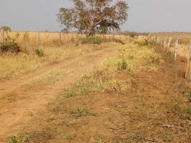 Fazenda Com 1.100 hectares Lago do Manso - Foto 9