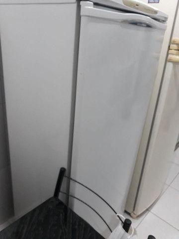 Freezer 230litros - Foto 2