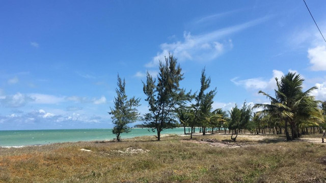 Terreno Praia Enseada dos Golfinhos - Itamaracá - Foto 8