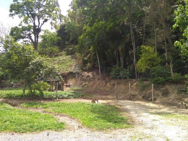 Oportunidade: Lindo Sítio em Santo Amaro da Imperatriz - Foto 5