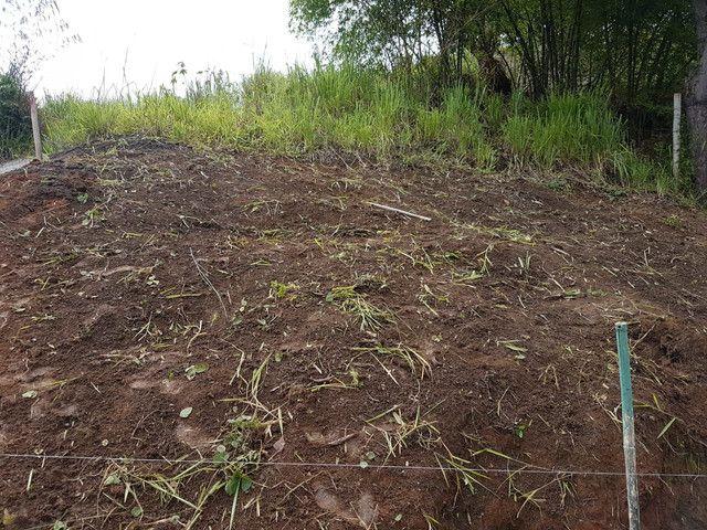 Terreno no Vila Rica ( Três Poços) - Foto 4