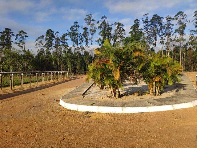 Chácaras Portal dos Ipês - a 100 metros da BR 116 - 96x SEM JUROS  - Foto 3