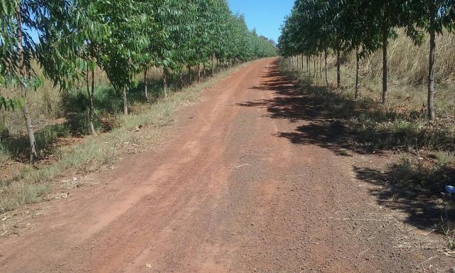 Fazenda em Araguaina Tocantins