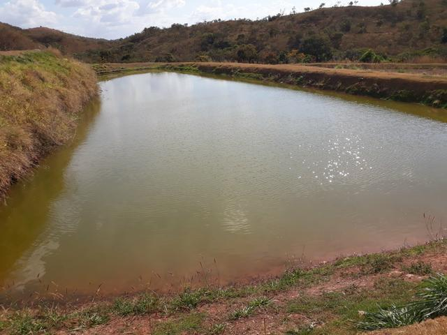 Oportunidade!! Vendo excelente fazenda em Formosa Goiás, com 168 hectares com muita água - Foto 7