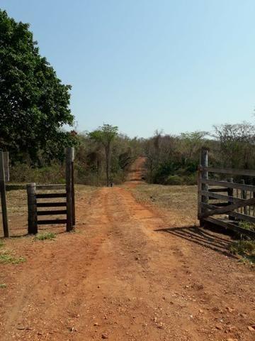 Fazenda a 82 Km de Cuiabá-MT próximo a Acorizal - Foto 5