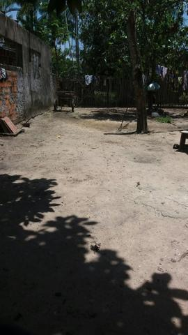 Mini sítio - Foto 4