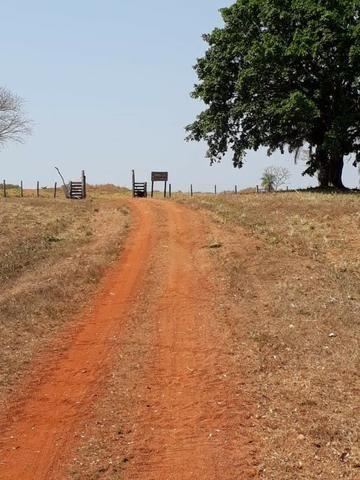 Fazenda a 82 Km de Cuiabá-MT próximo a Acorizal - Foto 8
