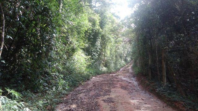 Maravilhoso Sítio Com 16 Hectares, Vila Maria, Em Piranguçu/Mg, A 6 Km De Campos Do Jordão - Foto 8