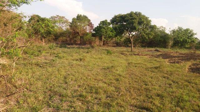 Terreno à venda, 18 alqueires por R$ 540.000,00 - Vila Mandi/PA - Foto 3