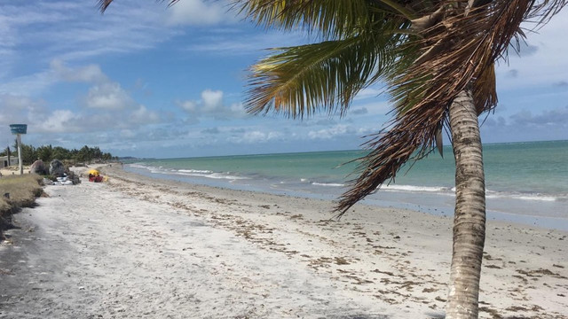 Terreno Praia Enseada dos Golfinhos - Itamaracá - Foto 6