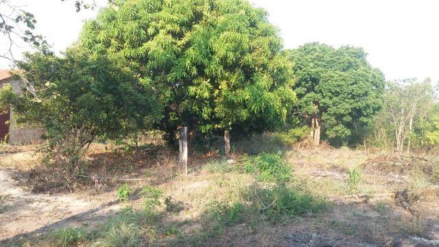 Terreno à venda, 18 alqueires por R$ 540.000,00 - Vila Mandi/PA - Foto 9