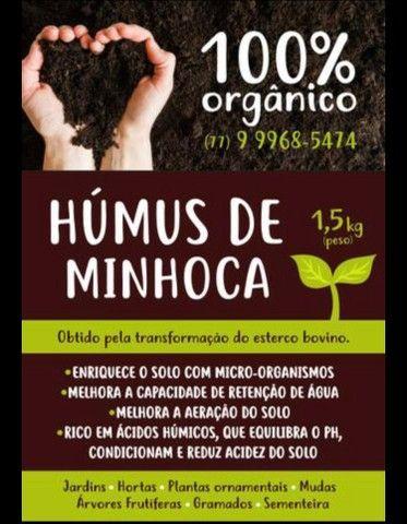 Húmus De Minhoca Kit 10 Pacotes 1,5 Kg, Fertilizante Orgânico - Foto 2
