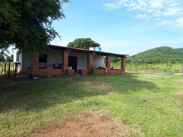 Fazenda à venda, 4 quartos, Centro - Corumbá/MS - Foto 4