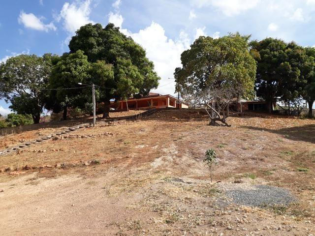 Oportunidade!! Vendo excelente fazenda em Formosa Goiás, com 168 hectares com muita água - Foto 8